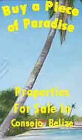 For Sale in Consejo Belize